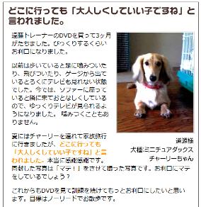 犬のしつけ遠藤03.png